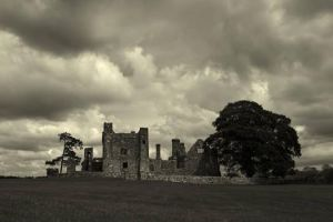 Bective Abbey © James Cosgrove