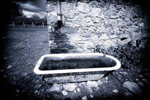 The Bath © John Fitzpatrick